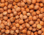 The seeds of a chickpea